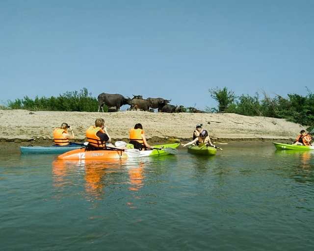 dolphin-kayaking-adventure-kratie-cambodia-5